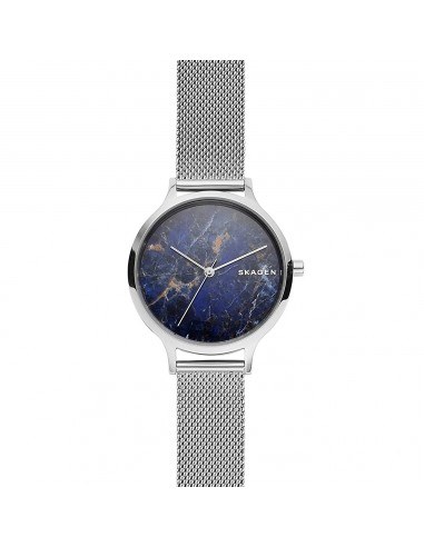 Reloj Skagen de acero Anita con gema...