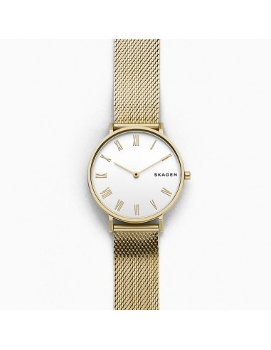 Reloj Skagen de acero Hald dorado