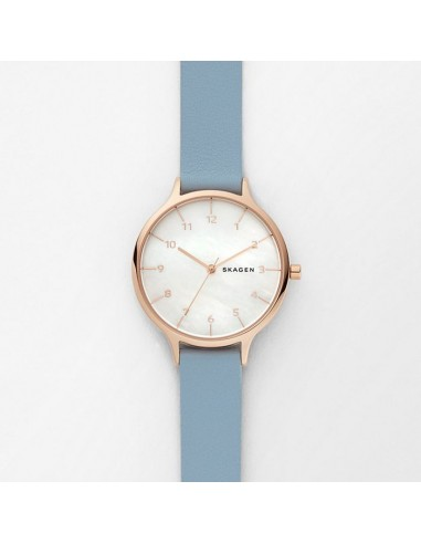 Reloj Skagen de acero mother pearl...